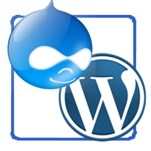 Drupal or WordPress Which is Right for You?